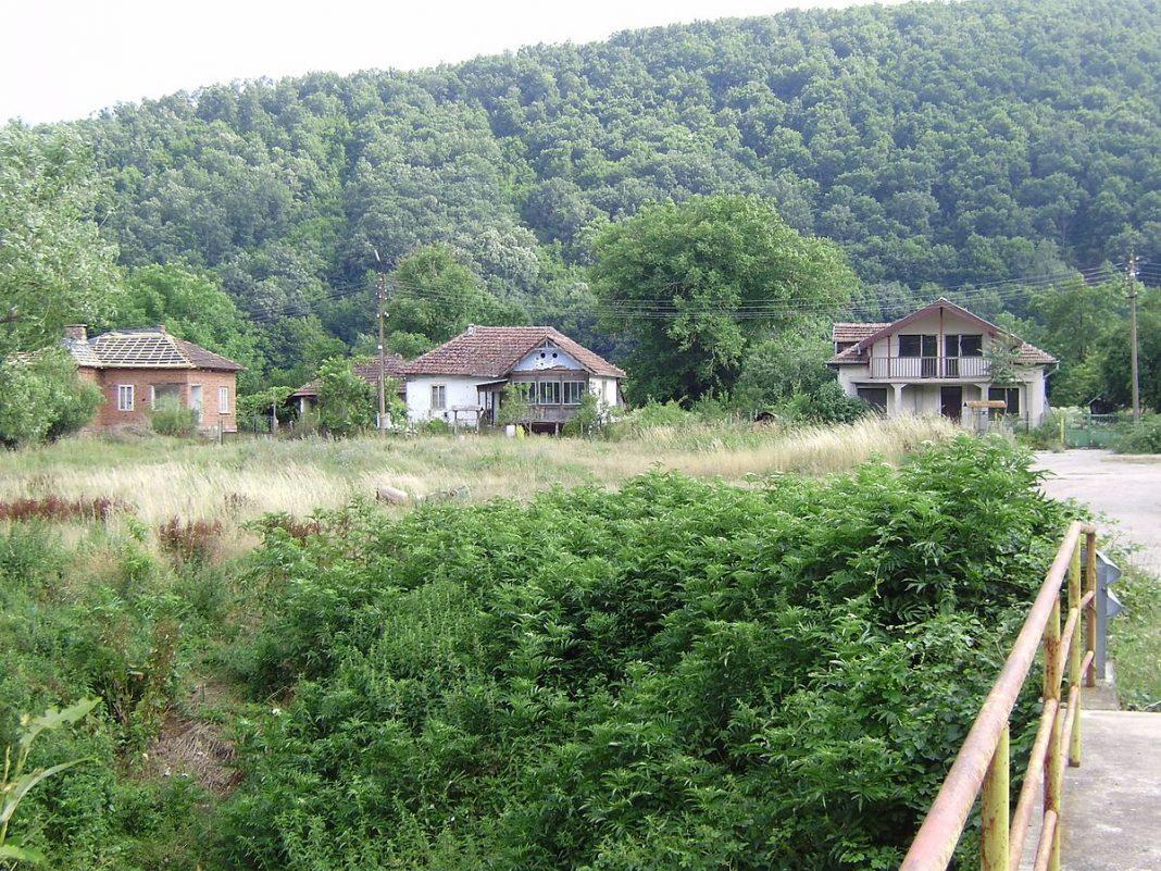 Chiflik Vidin District 2015