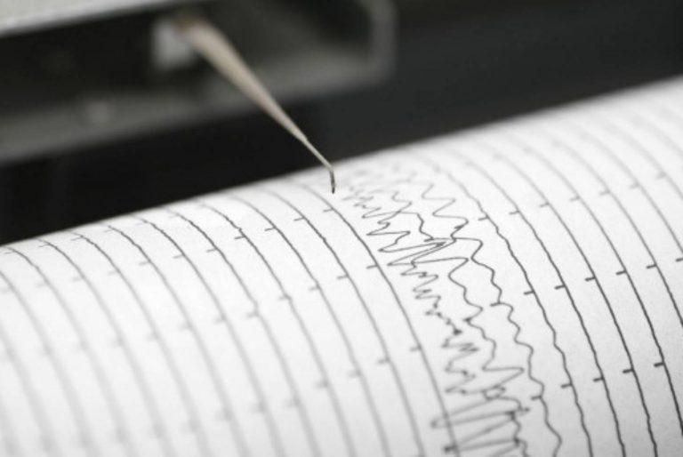 Силно земетресение край Видин
