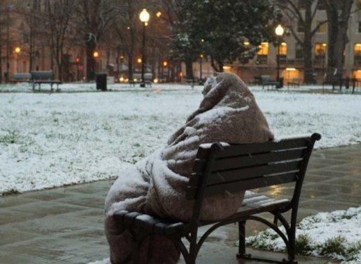 medium bezdomnik